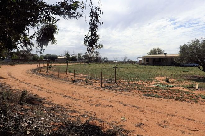 Picture of 25 LANDRACE ROAD, WHYALLA SA 5600
