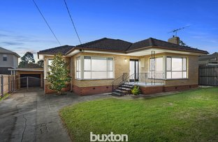 Picture of 7 Montgomery Avenue, Hamlyn Heights VIC 3215