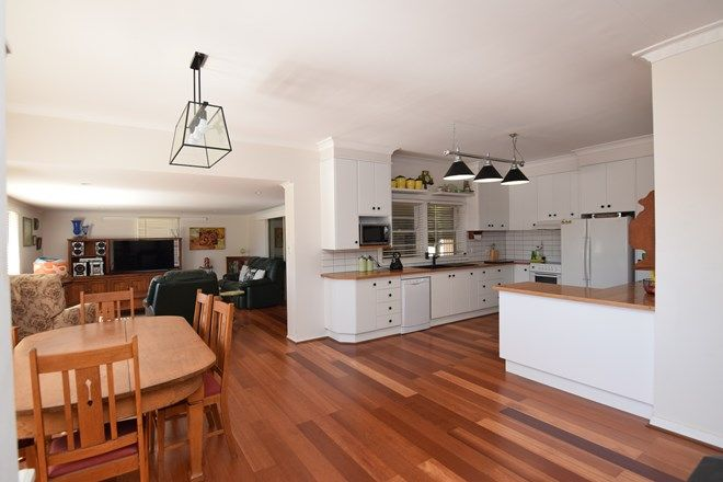 Picture of 456 Mount Lindesay Road, TENTERFIELD NSW 2372