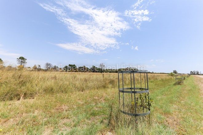 Picture of Lot 27 Shipard Close, GIBSON WA 6448