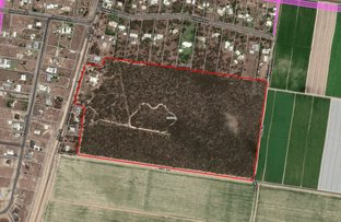 Picture of 190 Price, Kensington QLD 4670