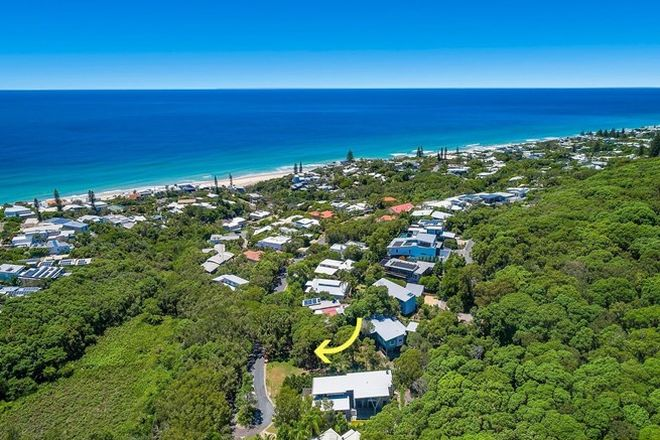 Picture of 17 Dolphin Bay Drive, SUNSHINE BEACH QLD 4567