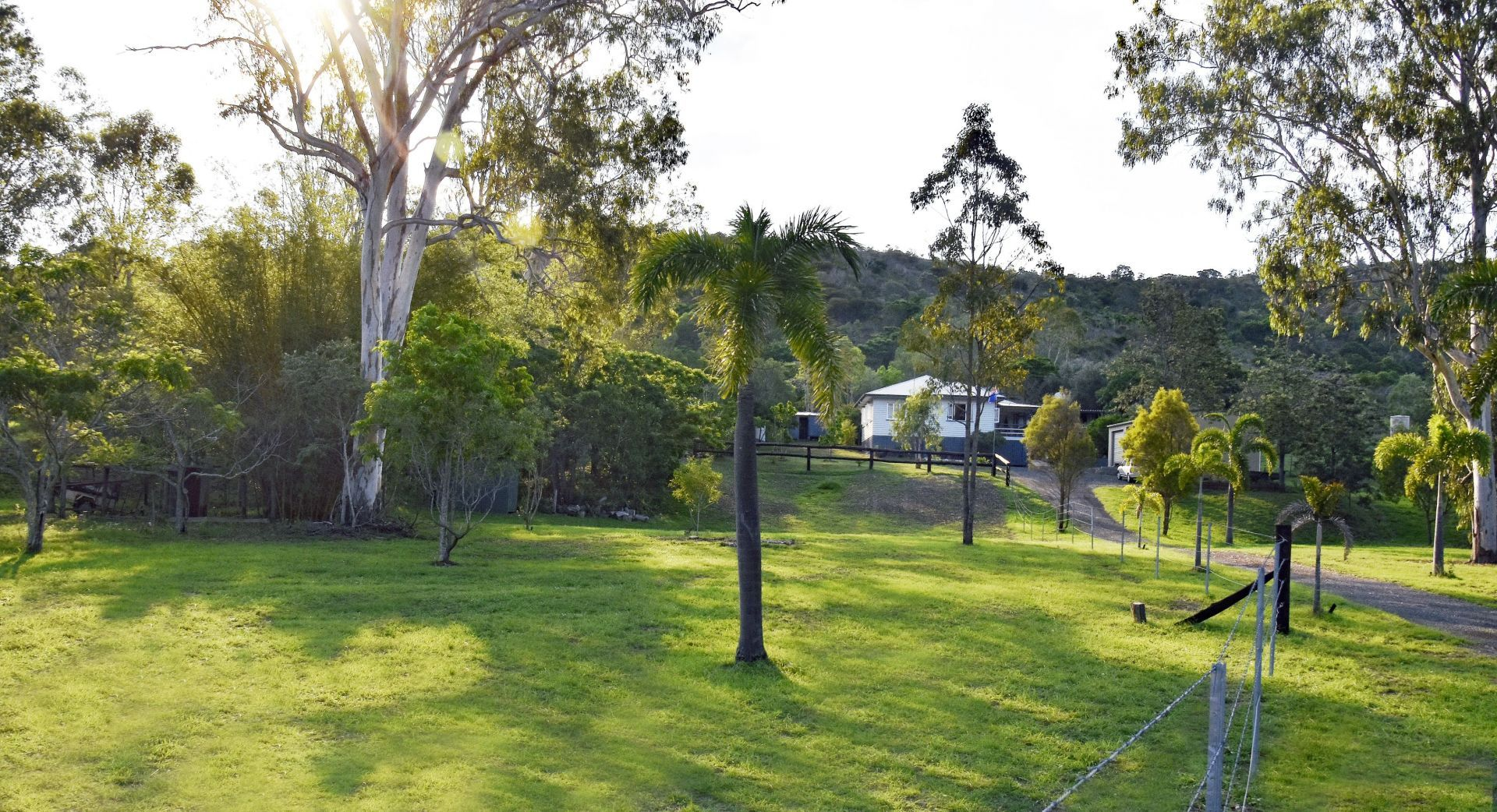 Darts Creek QLD 4695, Image 1
