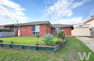 Picture of 8 Camberwarra Avenue, Clifton Springs VIC 3222
