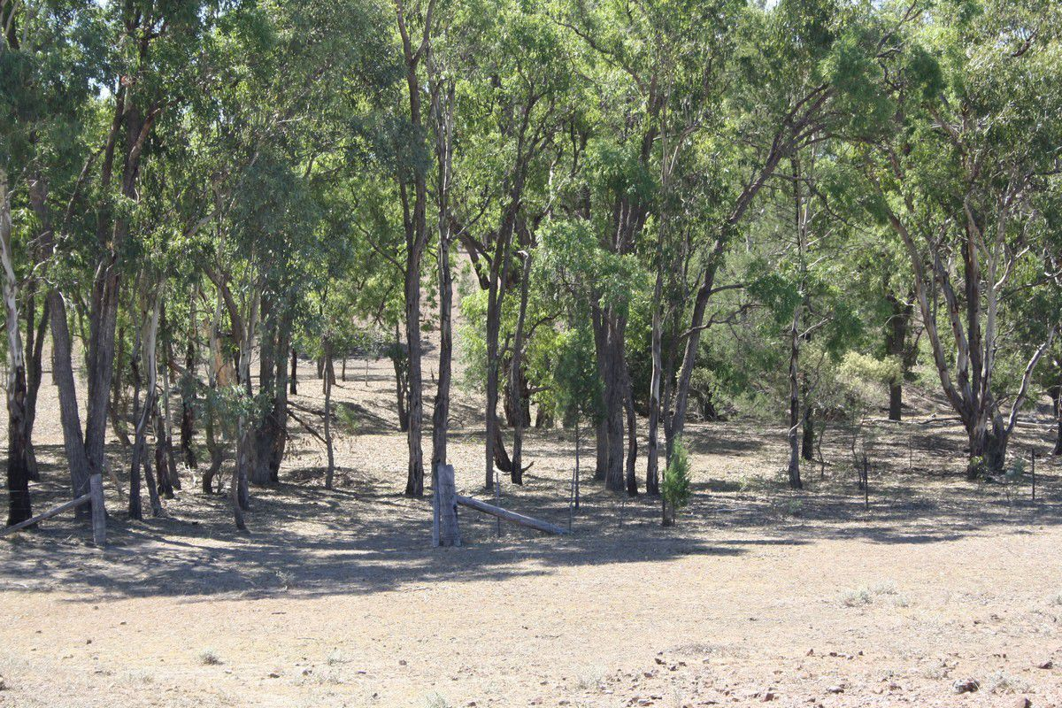 Lot 2 Luna Road, Oman Ama QLD 4352, Image 1