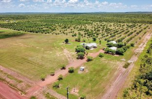 Picture of 785 Litchfield Park Road, Finniss Valley NT 0822
