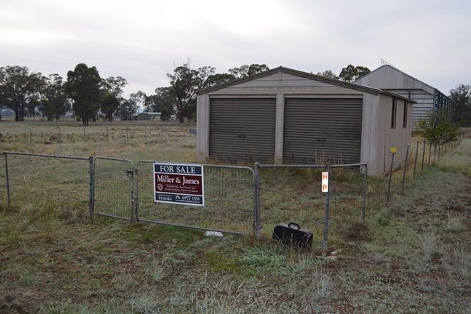 Picture of 41 Commins Street, ILLABO NSW 2590