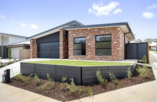 Picture of 18 Galloway  Street, Ascot VIC 3551