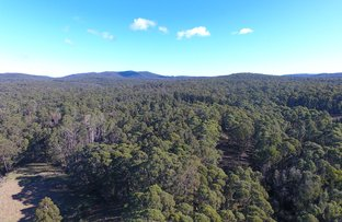 Picture of 54 Connley Track, Tonghi Creek VIC 3890
