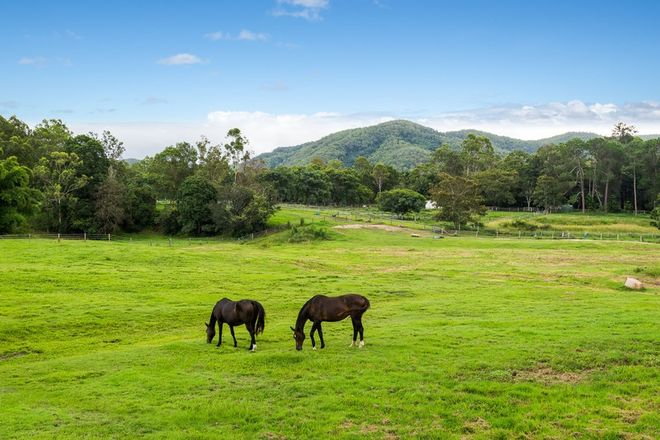 Picture of 16 Dawson Creek Road, HIGHVALE QLD 4520