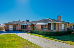 Picture of 589 Morley Drive, Morley WA 6062