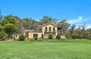 Picture of 19 Mountain View Terrace, Avondale NSW 2530