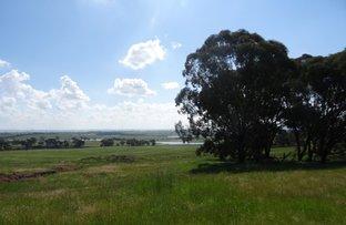 1864-1868 Euchareena Road, Molong NSW 2866