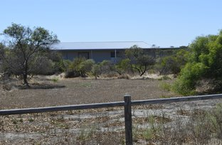 Picture of Lot 172 Sailfish Way, Jurien Bay WA 6516