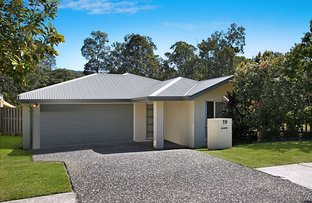 19 Wildflower Circuit, Upper Coomera QLD 4209