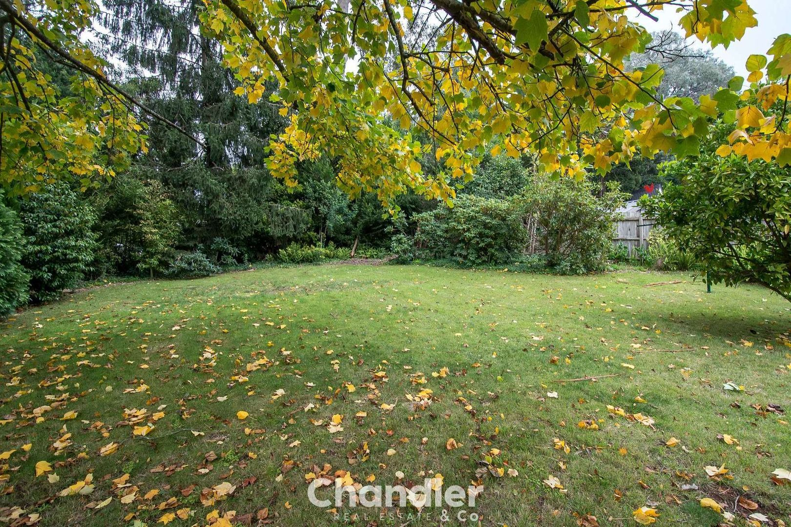 61 View Road, The Patch VIC 3792, Image 1
