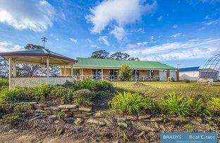 Picture of 580 Dairy Creek Road, Gundaroo NSW 2620