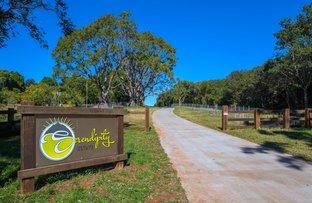 Picture of Lot 5/59 Wilson Road, Tamborine Mountain QLD 4272