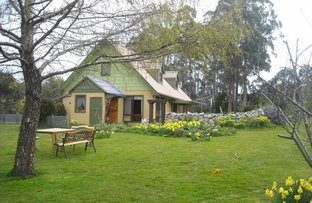 Picture of 45 Golden Valley Road, Golden Valley TAS 7304