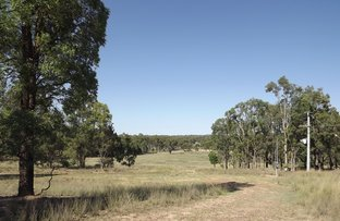 Picture of Lot 10 Gumnut Road, Coonabarabran NSW 2357