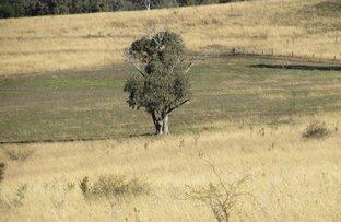 691 Fairford Road, Warialda NSW 2402