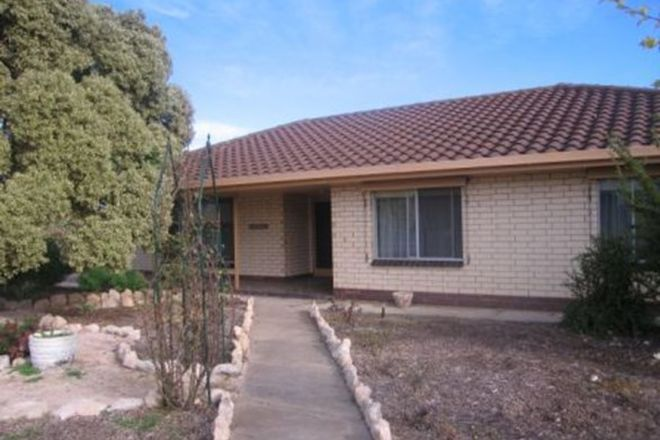 Picture of 44 Edithburgh Road, YORKETOWN SA 5576