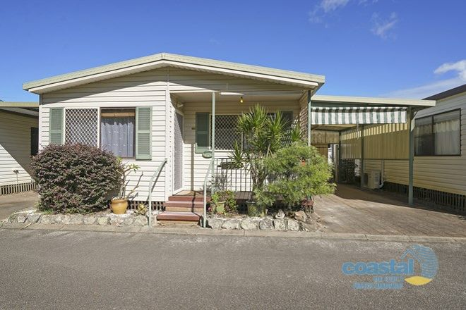 Picture of 38/2129 Nelson Bay Rd, WILLIAMTOWN NSW 2318