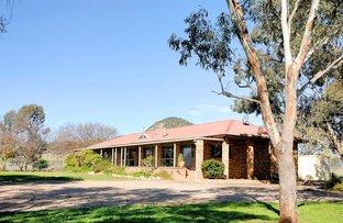 925 Quia Road, Gunnedah NSW 2380