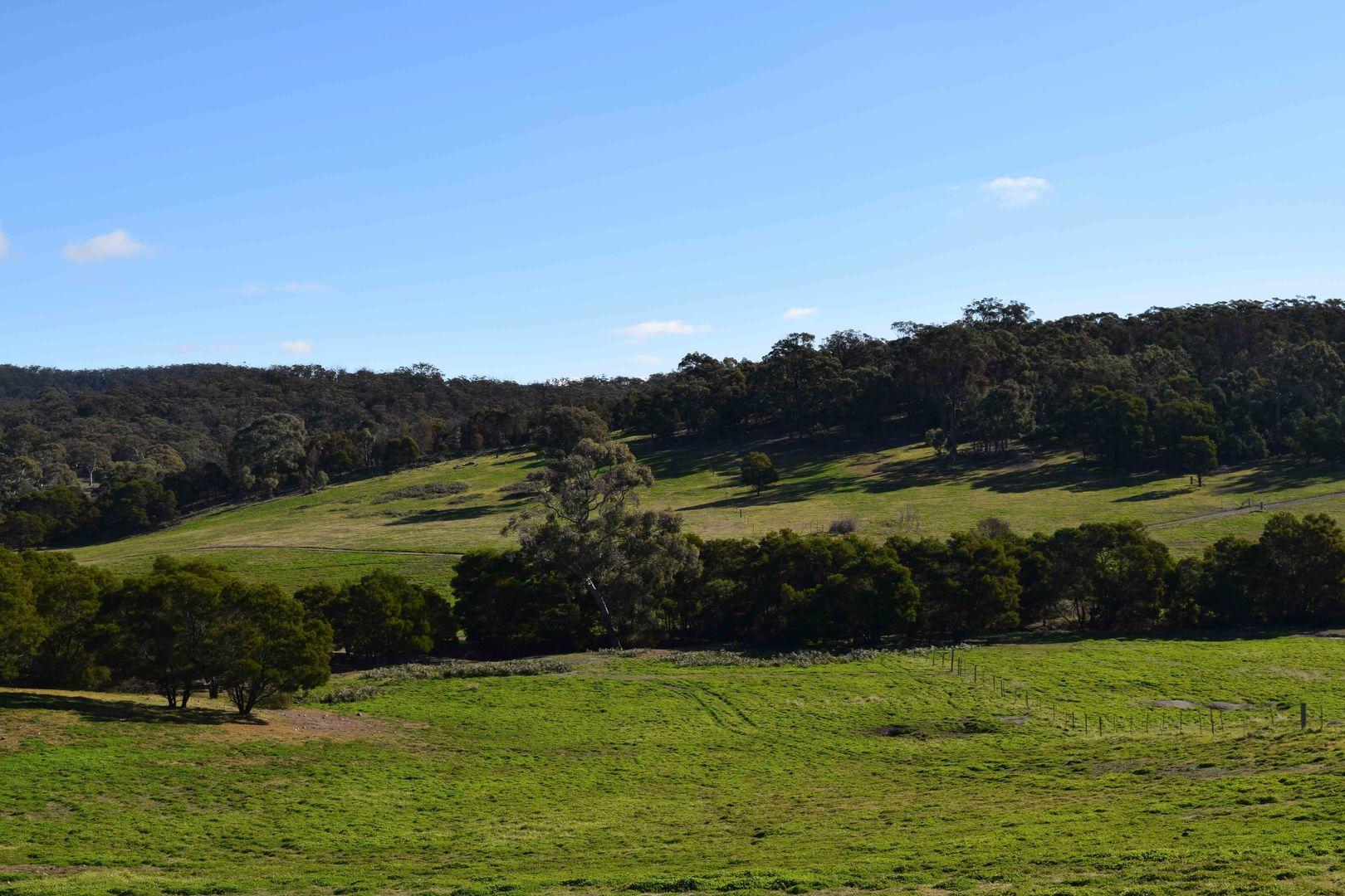 24, 45 Robinson Road, Goulburn NSW 2580, Image 1