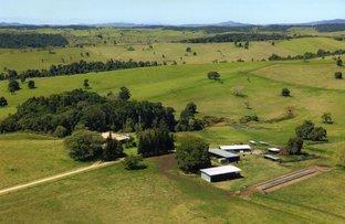 Upper Barron QLD 4883