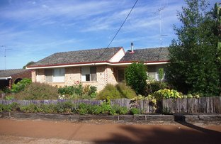 Picture of 5 Clive Street, Katanning WA 6317