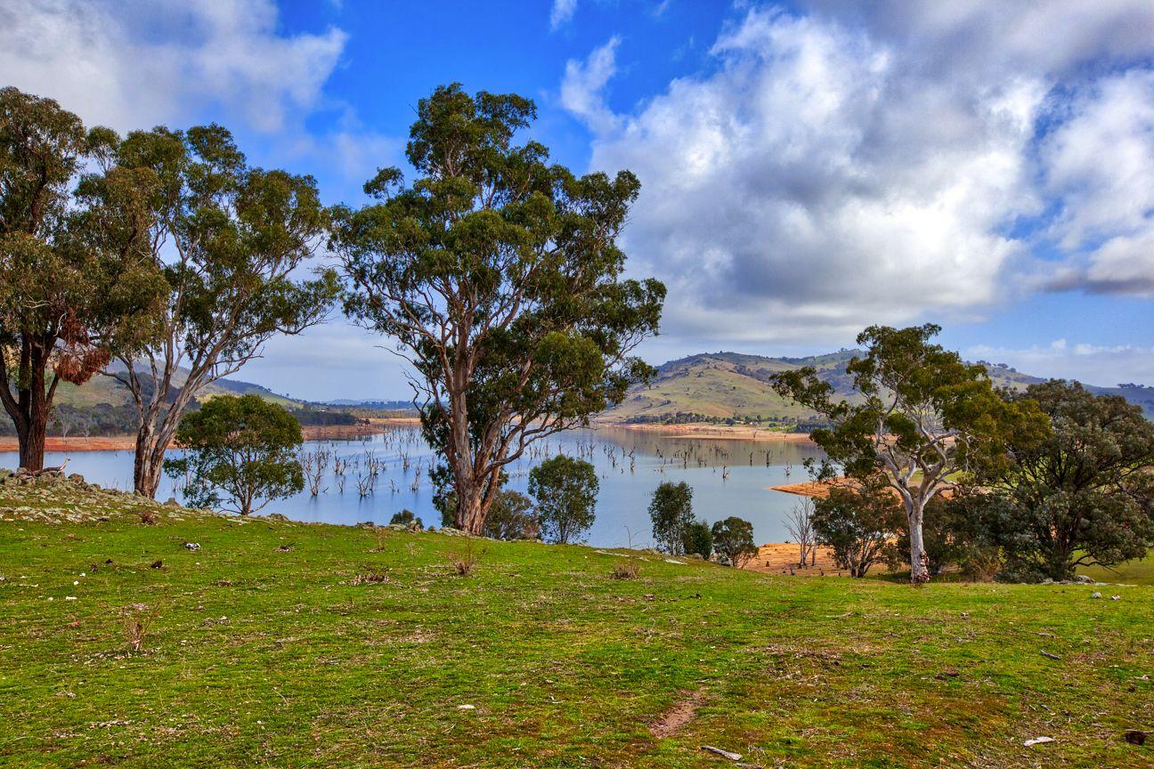 """Boxbourne"" River Road, Wymah NSW 2640, Image 1"