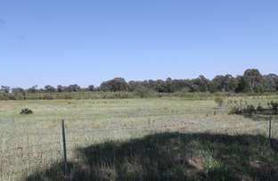 Picture of 1319 Castlereagh Highway, Gulgong NSW 2852