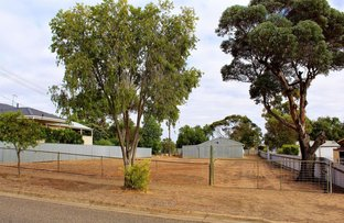 Picture of 13 Olive Street, Murray Bridge SA 5253