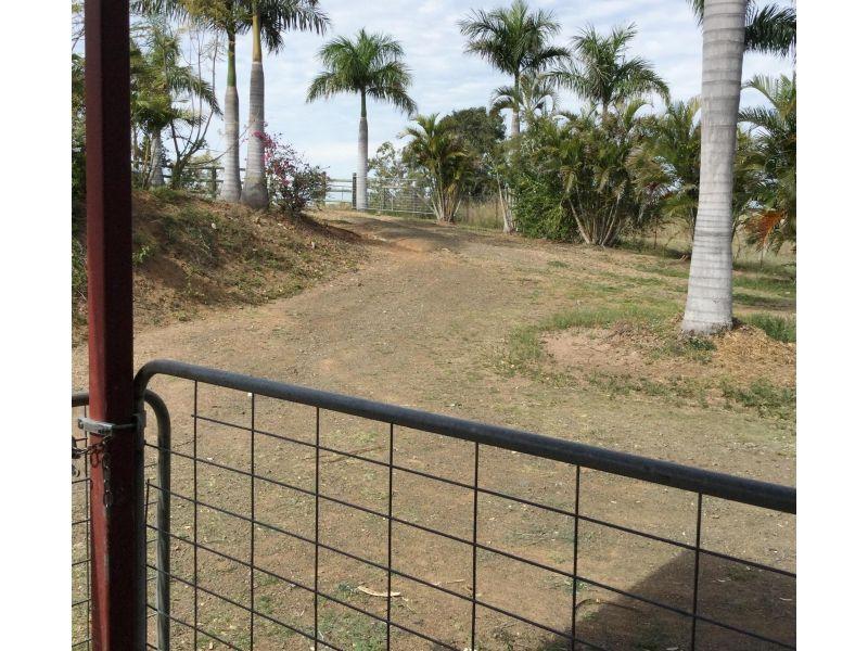 36 Mingo Road, Morganville QLD 4671, Image 2
