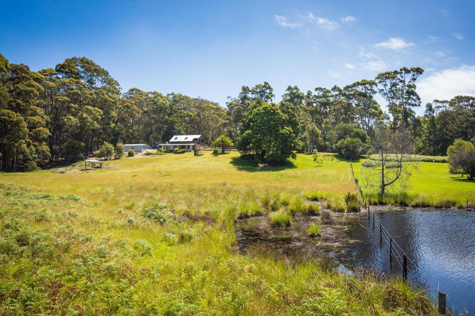 1094 Tathra-Bermagui Road, Tanja NSW 2550, Image 2