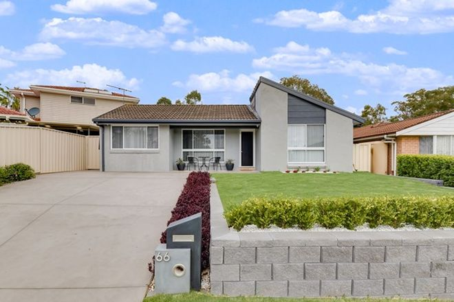 Picture of 66 Parma Crescent, ST HELENS PARK NSW 2560