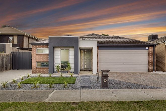 Picture of 31 Peppermint Grove, TAYLORS HILL VIC 3037