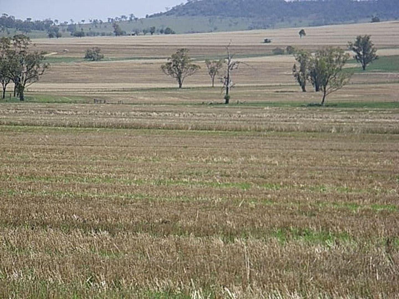 """Invereness"", Warialda NSW 2402, Image 2"