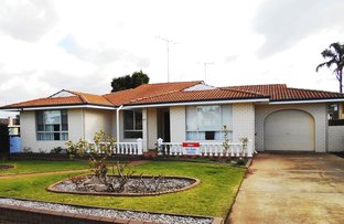 Picture of 41 Braeside Road, Katanning WA 6317