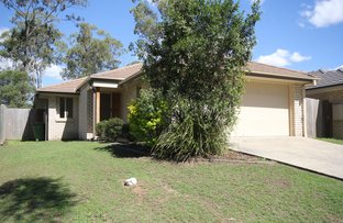 Picture of 7 Okelly Court, Collingwood Park QLD 4301
