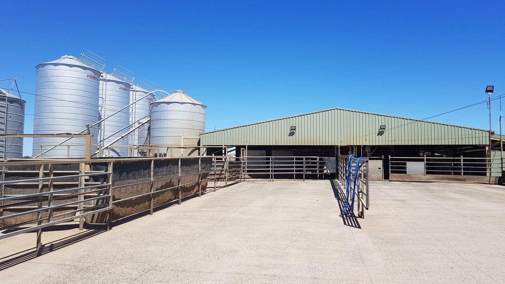 Moama NSW 2731, Image 2