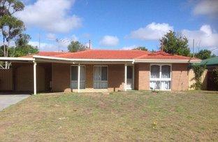 Picture of 16 Bardoc Court, Hillman WA 6168