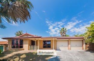 33 Shapcott Place, Runcorn QLD 4113