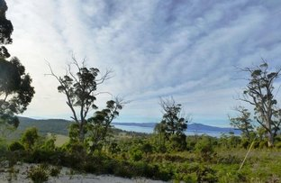Picture of 312 Heathy Hill Drive, Saltwater River TAS 7186