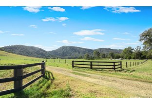 Picture of 140 Cookes Road, Conondale QLD 4552