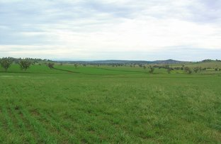 """Picture of """"Balmoral"""" Balmoral Rd, Mullaley NSW 2379"""