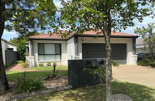 Picture of 24 Blackwattle Circuit, Arundel QLD 4214