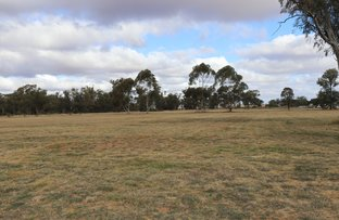 Picture of Lot Lot/6, 7, 8 & 9 Wollongough Street, Ungarie NSW 2669