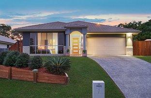 7 Treeline Circuit, Upper Coomera QLD 4209